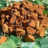 Chaga Pilz Chunks Getrocknet 450g. gehackt bis zu 5 cm. aus Estland