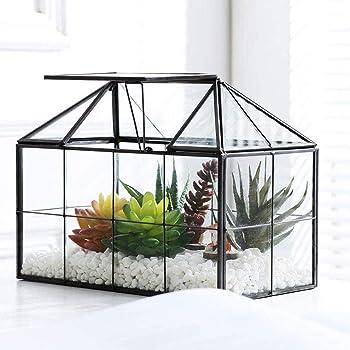 Purzest Glass Terrarium, House Shape Geometric Succulent Terrarium with Swing Lid Tabletop Planter Box Mini Indoor Greenhouse for Fern Moss Air Plants Miniature Housewarming Gift