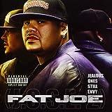 Songtexte von Fat Joe - Jealous Ones Still Envy 2 (J.O.S.E. 2)