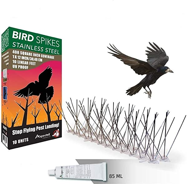 Aspectek Stainless Steel Bird Spikes 10 Feet 3 Metre Bird Deterrent Kit With Transparent Silicone Glue