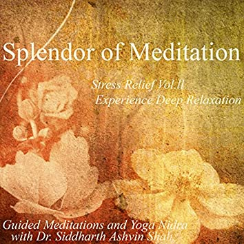 Stress Relief Vol. II Experience Deep Relaxation- Guided Meditations and Yoga Nidra With Dr. Siddharth Ashvin Shah