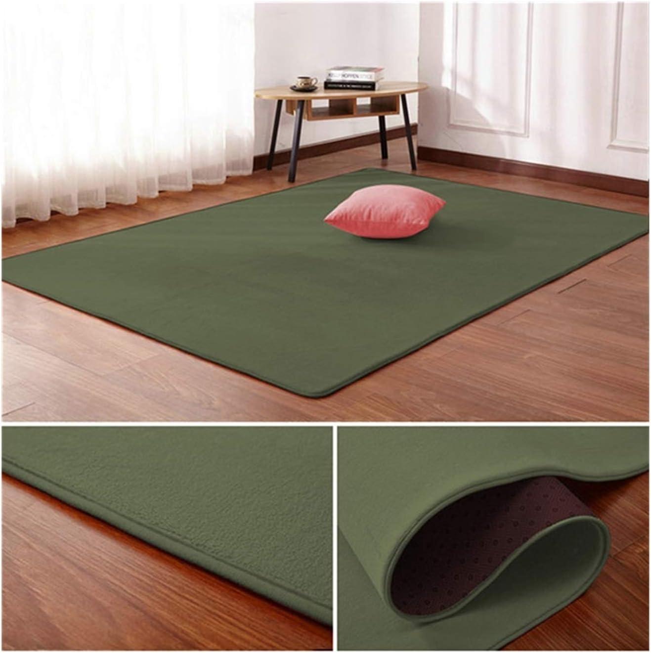 WAZG SYBLD Nordic Coral Velvet lowest price Carpet Room Living Bedr List price Mat Floor