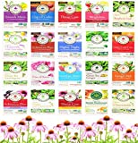 Traditional Medicinals Tea Bag Sampler Assortment Variety Pack Gift Box - 40 Count - Perfect Variety...