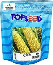 Sementes de Milho Doce Azteca M-3 Pcte C/ 100 Gramas