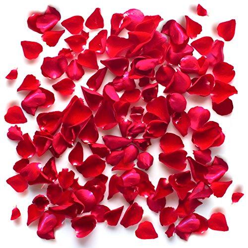 THE TWIDDLERS Deko Rosenblätter, Valentinstag Dekoration Schlafzimmer, Badewanne Deko - Rosenblätter Aus Seide Fühlen Rot Blumen Romantisch (2000) Rosenblüten