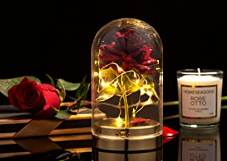 """HOMESEASONS Red Rose in Glass Dome with Candle Gift Pack, Pre-Lit Glass Dome Rose with Candle 5"""" H (Metal Base) (Glitter Red)"""