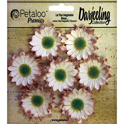 Petaloo Darjeeling Hortensias 2,5/cm 3,8/2Blue 3/pi/èces Acrylique Multicolore