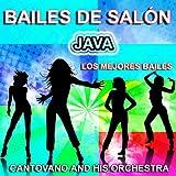Bailes de Salón : Java (Los Mejores Bailes , Ballroom Dancing)