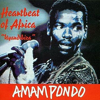 Heartbeat of Africa Uyandibiza