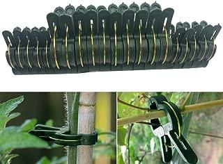Amazon.es: Plantas trepadoras - Soportes para plantas / Huertos ...