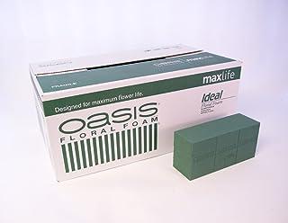 Brique 40 x OASIS Ideal Max blocs de mousse florale pour art Floral Fleuriste &affichage