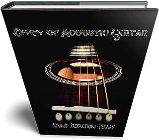 SPIRIT OF ACOUSTIC GUITAR - Large REAL Top Quality Multi-Layer WAVe/Kontakt Samples/Loops/Strum Studio Library. FREE USA C...