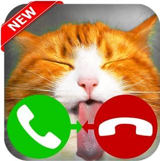 Fake Call Cat Game  - Free Fake Phone Call - PRO PRANK FOR KIDS! 2020