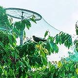 Estink- Rete da Giardino, Rete per Farfalle e Uccelli, zanzariera per Insetti, 4 m x 10 m,...