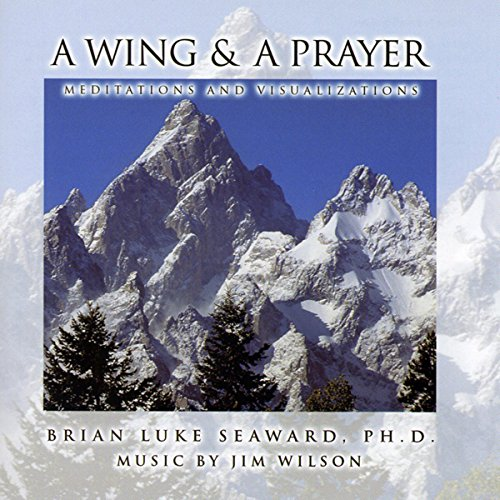 A Wing and a Prayer: Meditations and Visualizations audiobook cover art