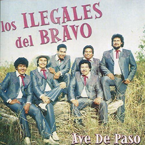 Los Ilegales del Bravo
