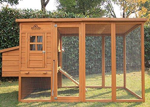 Pets Imperial® Arlington Poulailler de 2.5 m de long avec toit et grillage galvanisé pour 4 à 6 volailles selon leur taille