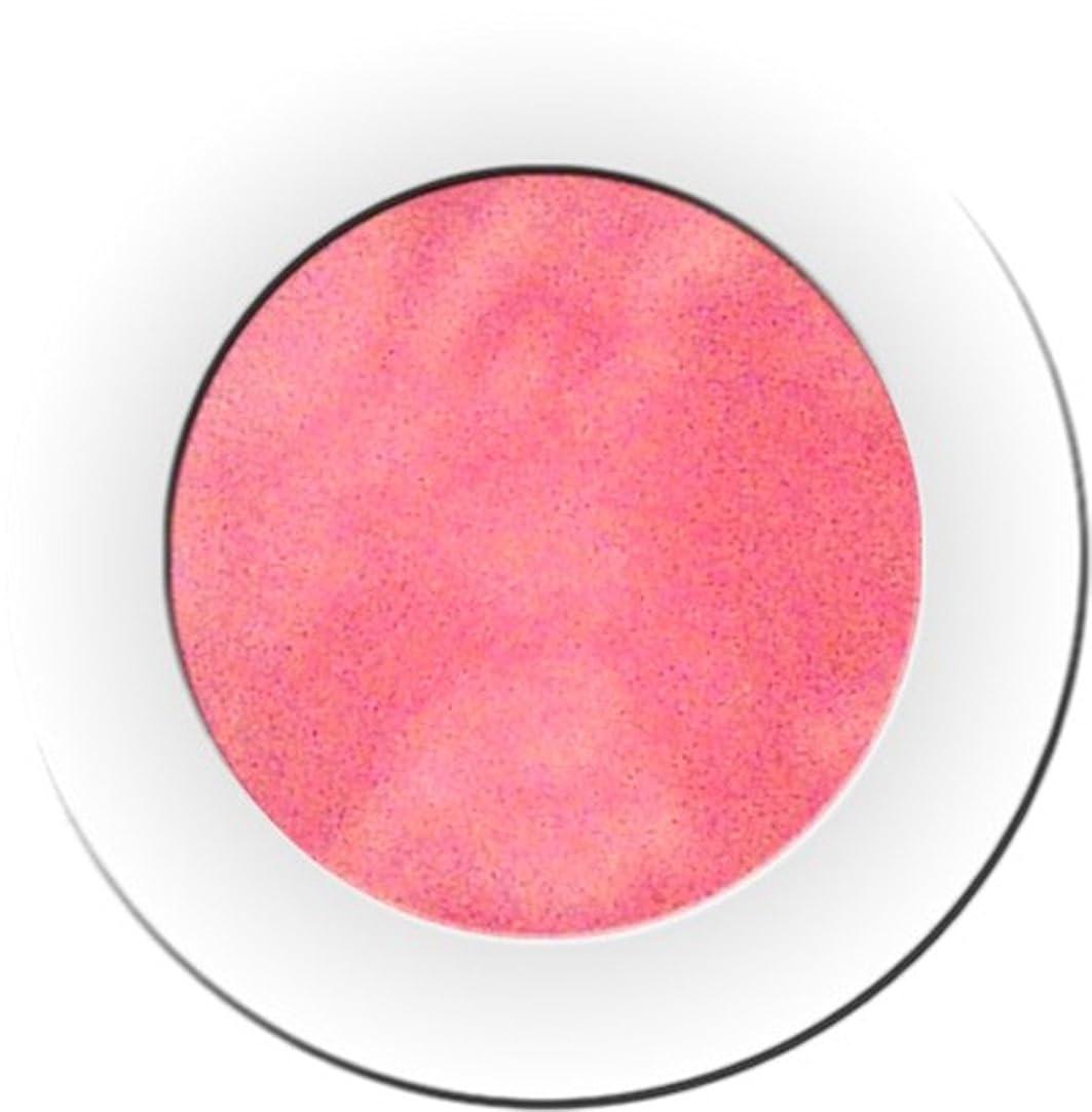 銀セットする反映するカラーパウダー 7g ジンク