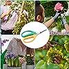 Ciseaux de taille coupés à la main en Acier inoxydable Jardin Bonsai Sécateur Ciseaux Élagage Cisailles Plantes Outil Pour Jardinage Élagage Herbe Fleur Secateur #5