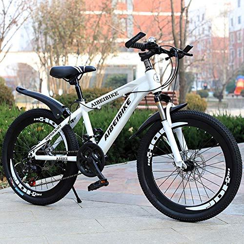 XHJZ Adulto Bambino della Bici di Montagna della Bicicletta Doppio Freno a Disco in Acciaio al Carbonio Bike 21 velocità Hardtail Mountain Bike,Bianca,24 inch