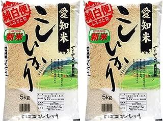 愛知県産コシヒカリ 10kg(5kg×2) 令和1年産 【こしひかり 白米 お米】