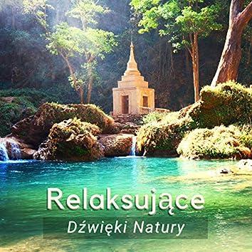 Relaksujące Dźwięki Natury - Muzyka Relaksacyjna, Odgłosy Natury