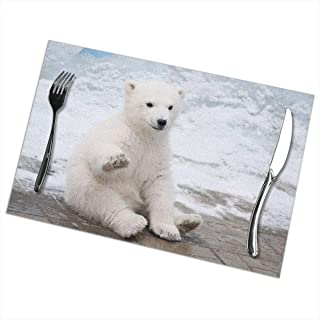 PrelerDIY Cute Baby Polar Bear Placemats Heat Insulation Stain Resistant Non Slip Washable Table Mats Kitchen Dining Table Decoration Set of 6, 18 x 12 in