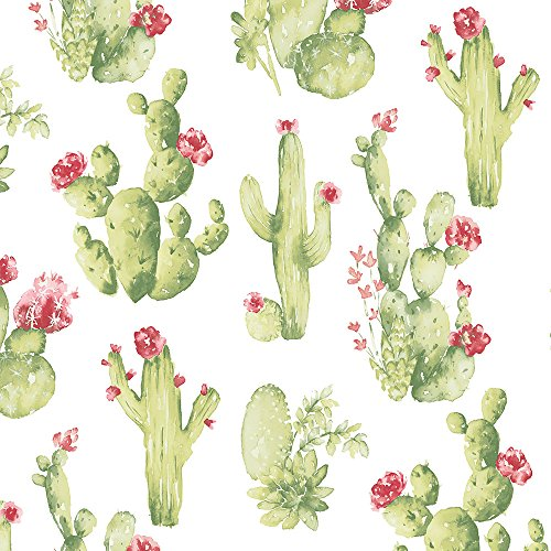 Norwall CK36630 Cactus Prepasted Wallpaper