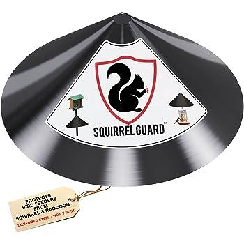 PREDATORGUARD Squirrel Guard Baffle - Protects Hanging Bird Feeders & Poles - Raccoon & Squirrel Proof Your Bird Feeders & Bird Houses - Anti-Rust Galvanized Steel - 17 Inch