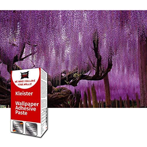 GREAT ART Fototapete Wisteria Glyzinien 210 x 140 cm – Wanddekoration Blumen Wandbild Lila Poster Kunst Dekoration Wald Natur Landschaft – 5 Teile Tapete inklusive Kleister