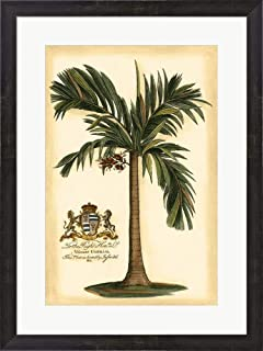 British Colonial Palm I by Vision Studio Framed Art Print Wall Picture, Espresso Brown Frame, 20 x 27 inches