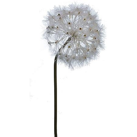 Pusteblume 80 cm Art Fleurs Fleurs Artificielles Löwenzahn pusteblumengras