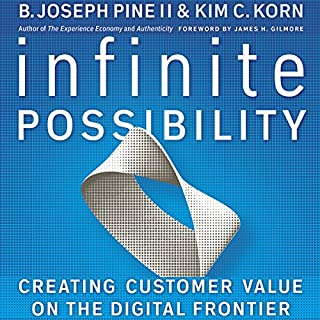 Infinite Possibility: Creating Customer Value on the Digital Frontier cover art