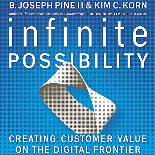 Infinite Possibility: Creating Customer Value on the Digital Frontier audiobook cover art