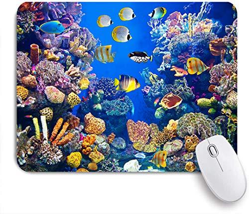 SUHOM Gaming Mouse Pad Rutschfeste Gummibasis,Buntes Aquarium, das verschiedene schwimmende Fische zeigt,für Computer Laptop Office Desk,240 x 200mm