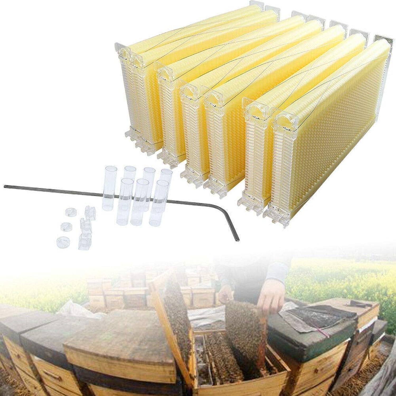 LianDu 7PC FoodGrade Auto Honey Beehive Frames Beekeeping Raw Bee Harvest Hive Frame