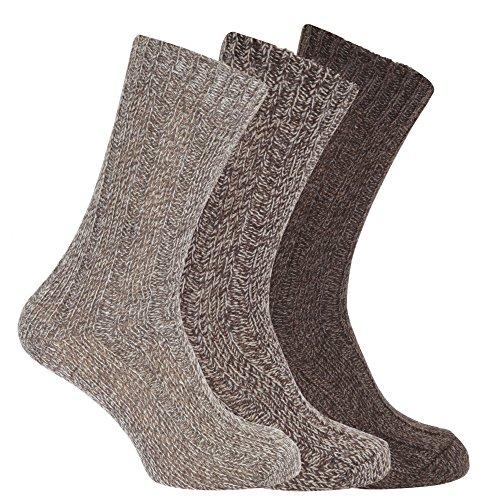 Textiles Universels Chaussettes de botte (Lot de 3) - Homme (39-45 FR) (Nuances de brun)