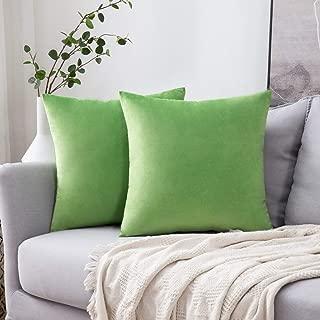 Best green velvet pillow case Reviews
