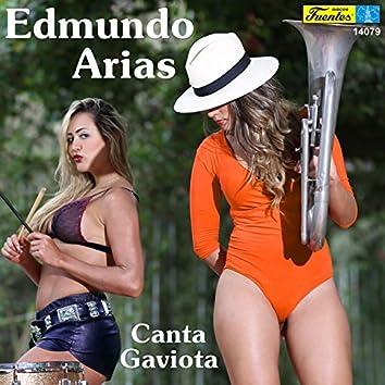 Canta Gaviota