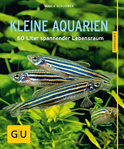 Kleine Aquarien: 60 Liter spannender Lebensraum