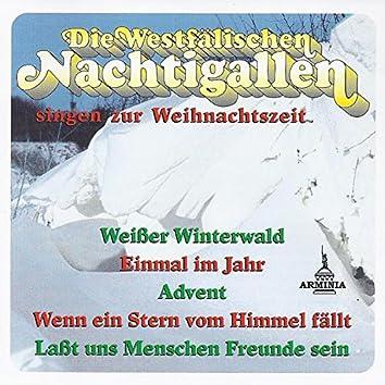 Die Westfälischen Nachtigallen singen zur Weihnachtszeit