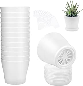 ADXCO 12 Pack 4 Inch Plastic Plant Pots Flower Planters Thick Flower Seedling Nursery Pots Outdoor Indoor Plants for Your Office, Room, Garden Decor with Pallet, White