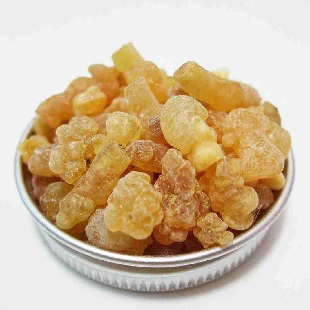 やさしく航海の怠なフランキンセンス Frsnkincense (乳香) 天然樹脂香 フランキンセンス(乳香), 1 Ounce (28 g)