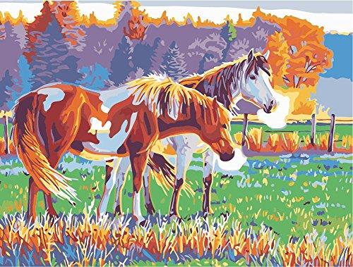 Fuumuui Lienzo de Bricolaje Regalo de Pintura al óleo para Adultos niños Pintura por número Kits Decoraciones para el hogar-Caballo marrón y Blanco 16 * 20 Pulgadas