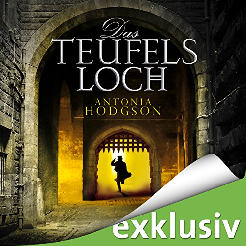 Das Teufelsloch (Tom Hawkins 1) audiobook cover art