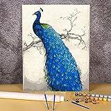 Animal pavo real DIY pintura por números paquete de pinturas acrílicas 40x50cm pintura por números pinturas para adultos arte hecho a mano Pintura-por-números