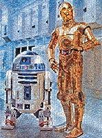 Buffalo Games Star Wars Photomosaic: C 3PO and R2 D2 Jigsaw Bigjigs Puzzle (1000 Piece) [並行輸入品]