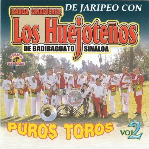 Banda Los Huejoteños