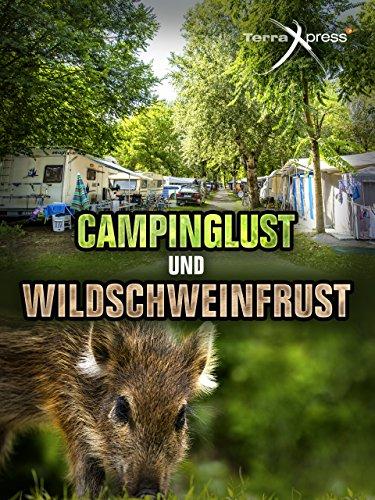 Campinglust und Wildschweinfrust