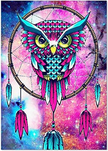 Steine Steinchen DIY 5D Diamond Painting Kit, Set Für Do It Yours Bohrer Stickereien Art Owls By Numbers Für Home Wall Decor Rose Und Blau